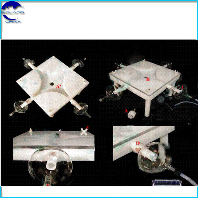 4 channel Lab Insect Olfactory Apparatus 150mm activity room insect olfactometer
